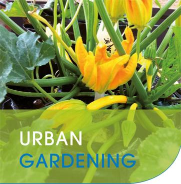 urban_gardening_image_header