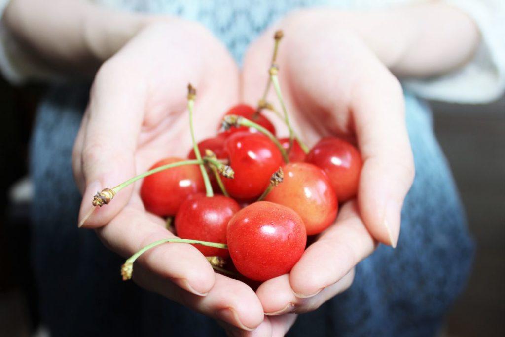 and-cherries-1532124